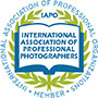 iapo international association of professional photographers new york nyc